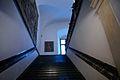 7505viki Wawel. Foto Barbara Maliszewska.jpg