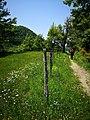 96 Turismo Emilia Romagna 8 giugno 2019 Parco dei laghi di Suviana e Brasimone, un ringraziamento speciale alle guide Eugenia e Walter.jpg