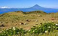 Açores 2010-07-19 (5046778098).jpg