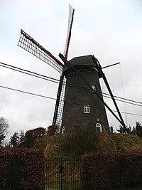 Salm-Salm molen in Hoogstraten
