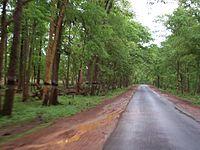 A Road near lambasinghi.jpg