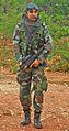 A Senior CoBRA Force Officer.jpg