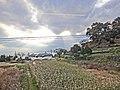 A farm - panoramio.jpg