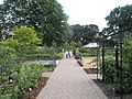 A gentle stroll at RHS Wisley - geograph.org.uk - 847264.jpg