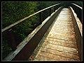 A ponte do muiño (Aranga) - panoramio.jpg