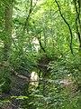 Aardenburg Engels landschap.JPG