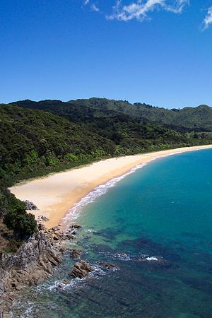 Totaranui is a 1km long beach and the site of ...