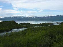 Fiume Abiskojåkka e lago Torneträsk