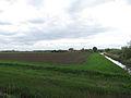 Albertpolder, zicht op de polder foto4 2013-05-13 13.15.jpg