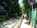 Aleea Dorohoi - panoramio - eug.sim.jpg