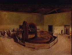 Alfredo Norfini: Carretão para beneficiar café - Campinas, 1850