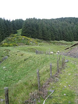 Allerhope Burn valley near Clennell 1 - geograph.org.uk - 451412