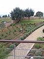 Alphavilla Der kleine Teil des Gartens - panoramio (1).jpg