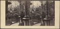 An Indoor Garden, from Robert N. Dennis collection of stereoscopic views.png