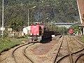 Andasibe rail 01.JPG