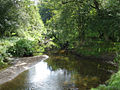 Anderton Nature Park - Lesley's Leap - geograph.org.uk - 254709.jpg