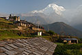Annapurna South from Ghandruk (4525940208).jpg