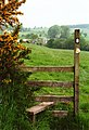 Another hour, another stile - geograph.org.uk - 710598.jpg