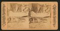 Apache Indian, from Robert N. Dennis collection of stereoscopic views.png