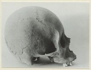 Arkeologiskt föremål från Teotihuacan - SMVK - 0307.q.0063.tif