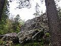 Arrampicatore scende da un sasso - Foppiano di Crodo (Verbano-Cusio-Ossola), 2017-04-24.jpg