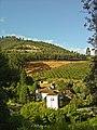 Arredores de Penacova - Portugal (3215485974).jpg