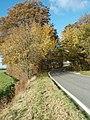 Autumn Trees Towards Buckworth - geograph.org.uk - 1045843.jpg
