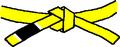BJJ Yellow Belt.PNG
