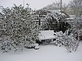 Back Garden in Winter - geograph.org.uk - 720507.jpg