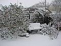 Back Garden in Winter - geograph.org.uk - 720507.jpg