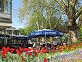 Bad Krozingen - Park - Restaurant - panoramio - Baden de.jpg