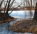 Badeweiher im Winter - panoramio (5).jpg