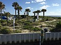 Bald Head Island NC - Harbor - panoramio (7).jpg