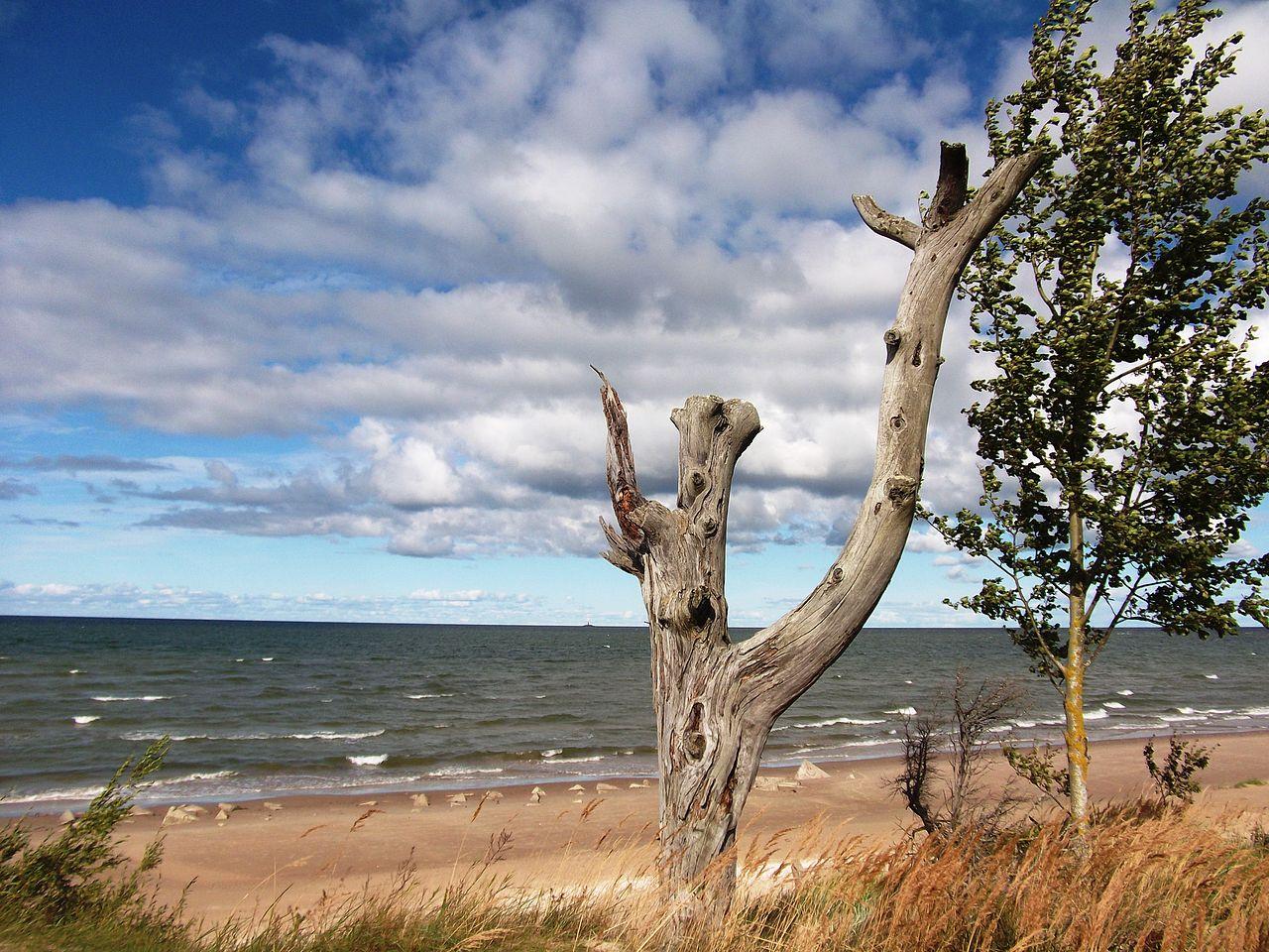 Cape Kolka, ujung utara Latvia di Teluk Riga