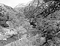 Bank protection, Virgin River. ; ZION Museum and Archives Image ZION 8534 ; ZION 8534 (0c3ded16fffb43d2a15a537def5185fe).jpg