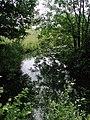 Barn Hill Pond - geograph.org.uk - 471940.jpg