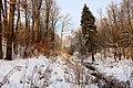 Bartoszyce. Zimowa Dolina Suszycy. - panoramio.jpg