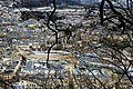 Bath Abbey through the trees - panoramio.jpg