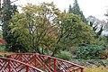 Batsford Arboretum, Gloucestershire-8308339014.jpg