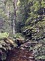 Beauchamp Falls - panoramio (6).jpg