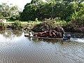 Beaufort, Sabah, Malaysia - panoramio (4).jpg