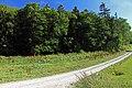 Beim Forsthaus Segel - panoramio (4).jpg