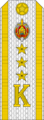Belarus MIA—19 Cadet-Senior Ensign rank insignia (White).png