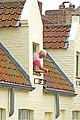 Belgium-5767 - Vacuuming a Gutter! (13639701284).jpg