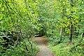 Belvoir forest, Belfast (2) - geograph.org.uk - 1515547.jpg