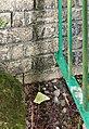 Benchmark at Giles Shirley Hall.jpg