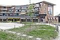 Beplanting Plein winkelcentrum Heksenwiel P1460968.jpg