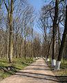Berezova Rudka Park Pol-253.jpg