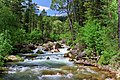Bighorn National Forest - August 2017.jpg