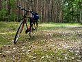 Bike, Puszcza Zielonka (Huta Pusta).jpg